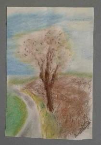"""Der """"Baum am Ortsrand"""" (nach der Unterführung beim Biobauern Lenz) fand allgemein Zustimmung."""